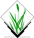 Grasslogo vector small.png